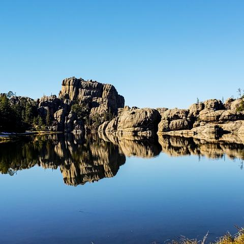 Your Heart in the Black Hills